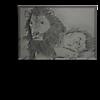 Tiere  Zeichnungen